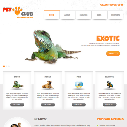 AS 002056 Pet Club Joomla Template
