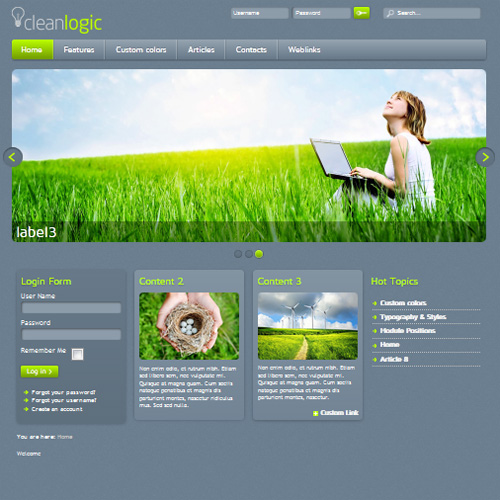 Clean Logic Joomla Template