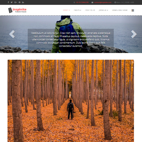 Inspinite Joomla Nature Template by PCMSHAPER
