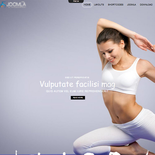 Joomla 162 Joomla Yoga Template by Mix Web Templates