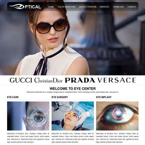 RT Optical Responsive Joomla Template