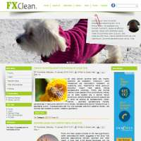 FX Clean Joomla Template